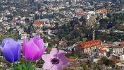 Ελληνικές Κοινότητες 7